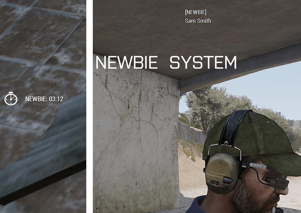 Newbie System
